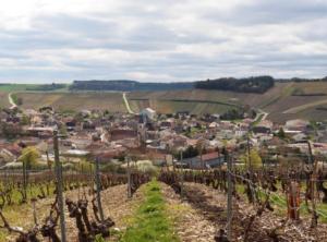 la-vie-en-rose-flamant-week-end-aube-champagne-slow-tourisme-champagne-fourrier-vignes-vue-baroville